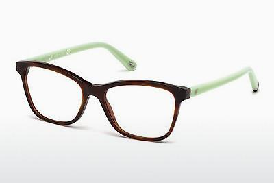 Designerglasögon Web Eyewear WE5200 053 - Havanna, Yellow, Blond, Brown