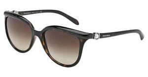 Tiffany TF4093H 80153B BROWN GRADIENTDARK HAVANA