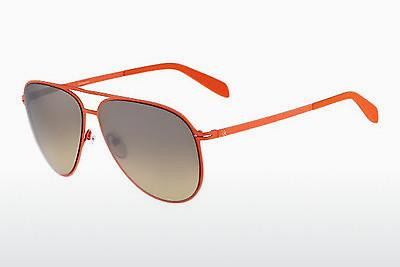 Solglasögon Calvin Klein CK2138S 286 - Orange