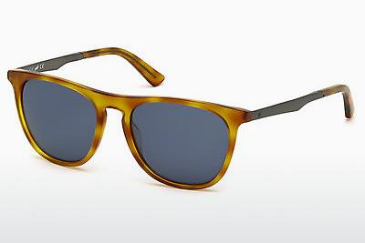 Solglasögon Web Eyewear WE0160 53V - Havanna, Yellow, Blond, Brown