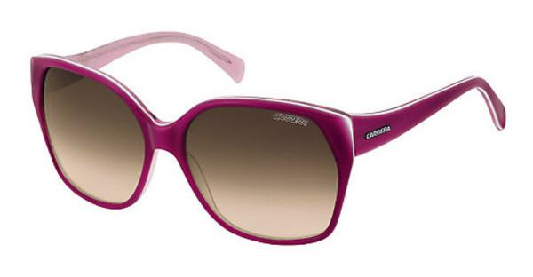Carrera   GISELE 80G/S2 BROWN SFCYC LILAC