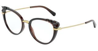Dolce & Gabbana DG5051 3159 TRANSPARENT BROWN