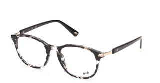 Web Eyewear WE5331 55A