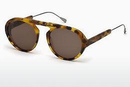 Solglasögon Tod's TO0231 53J - Havanna, Yellow, Blond, Brown