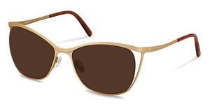 Bogner BG002 D brown - 87%gold, havana