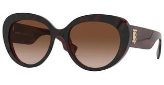 Burberry BE4298 390513 BROWN GRADIENTTOP HAVANA ON BORDEAUX