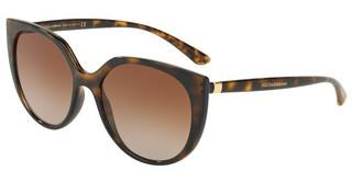 Dolce & Gabbana DG6119 502/13 LIGHT & DARK BROWN GRADIENTHAVANA