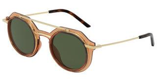 Dolce & Gabbana DG6136 324371 DARK GREENTRANSPARENT AMBER