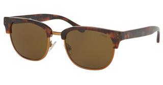 Polo PH4152 501773 OLIVEJERRY TORTOISE/ BRONZE