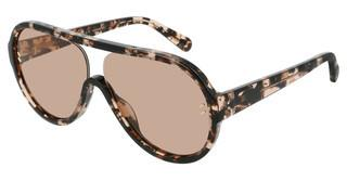 Stella McCartney SC0153S 004 BROWNHAVANA